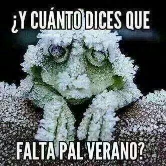 Cuanto Falta Para El Verano Humor Funny Memes