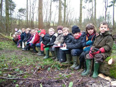 Children-chilling-out-on-their-newly-felled-tree.jpg (400×300)