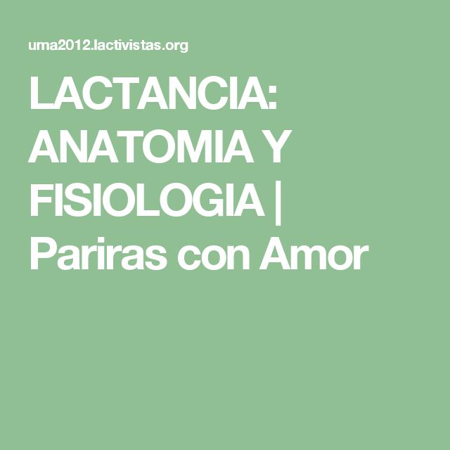 LACTANCIA: ANATOMIA Y FISIOLOGIA | Pariras con Amor | Prenatal ...