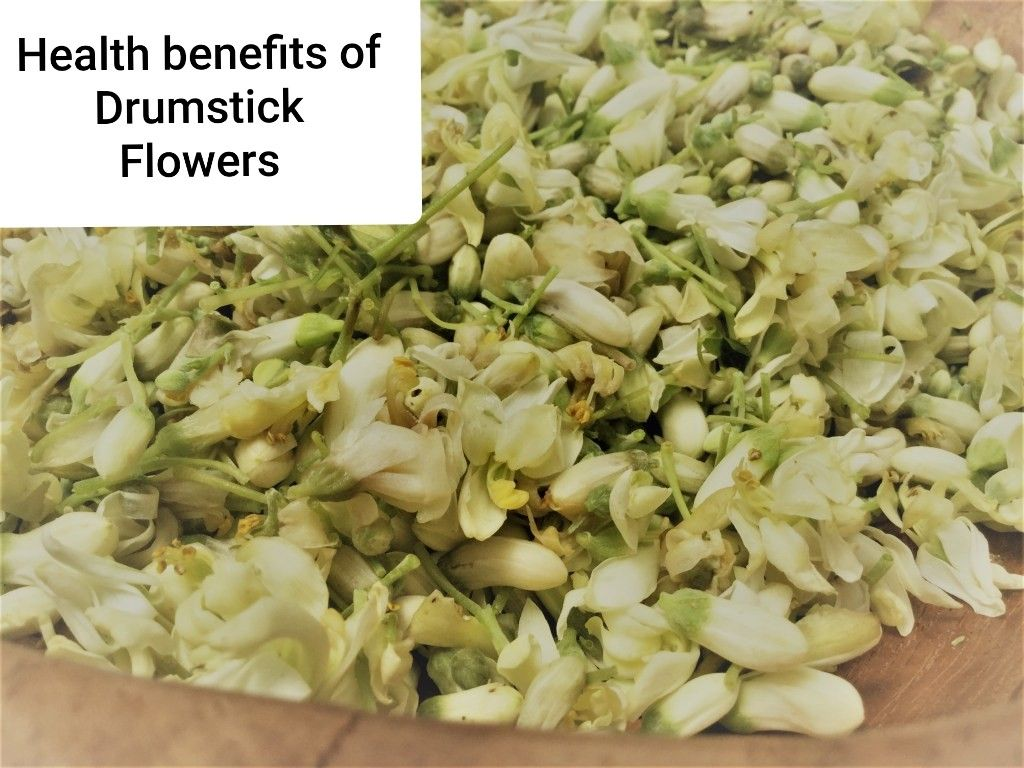 Drumstick Flowers And It S Amazing Health Benefits In 2020 Healthy Medicinal Tea Health