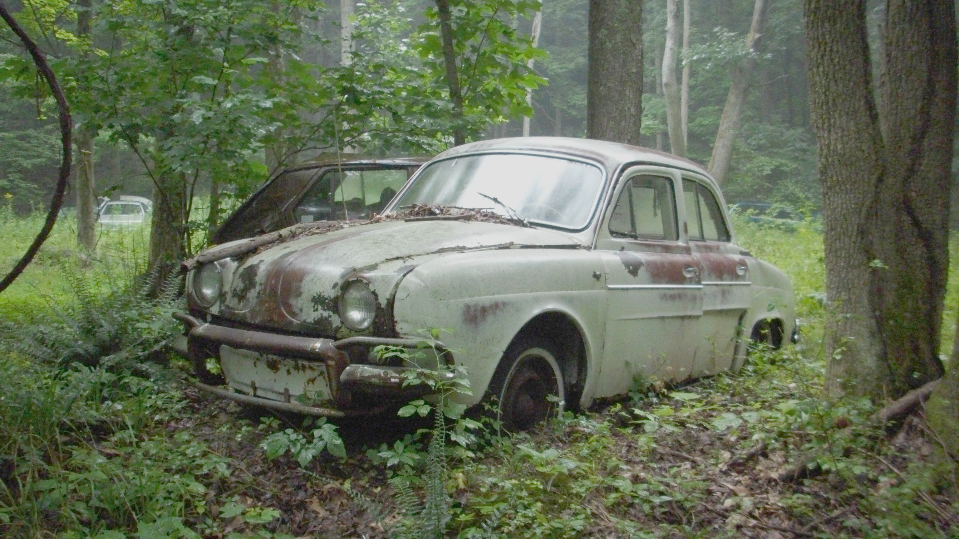 A JUNK RENAULT DAUPHINE IN JULY 2009
