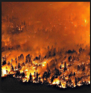 Fossil Fuel Pollution Raging British Columbia Fires