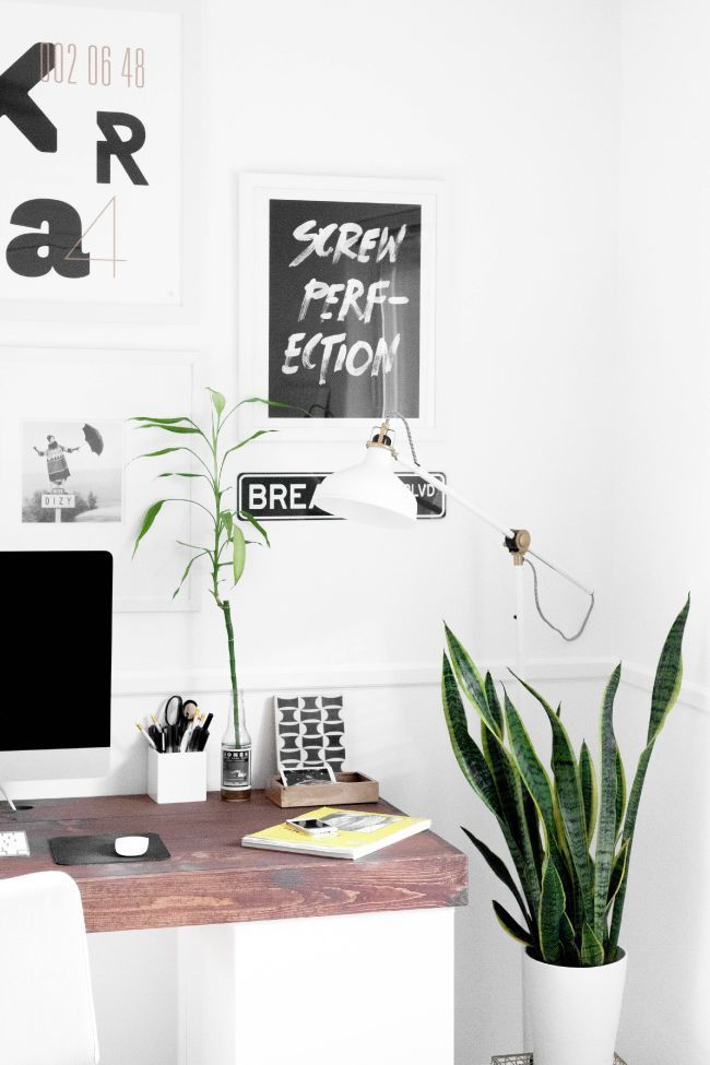 Breanna Rose   Office