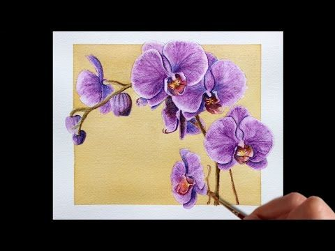 Watercolor Pencil Techniques How To Paint Flowers Youtube
