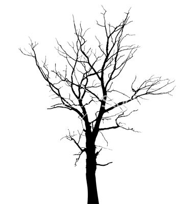 Tree Silhouette Google Search Tree Drawing Tree Silhouette Black Tree