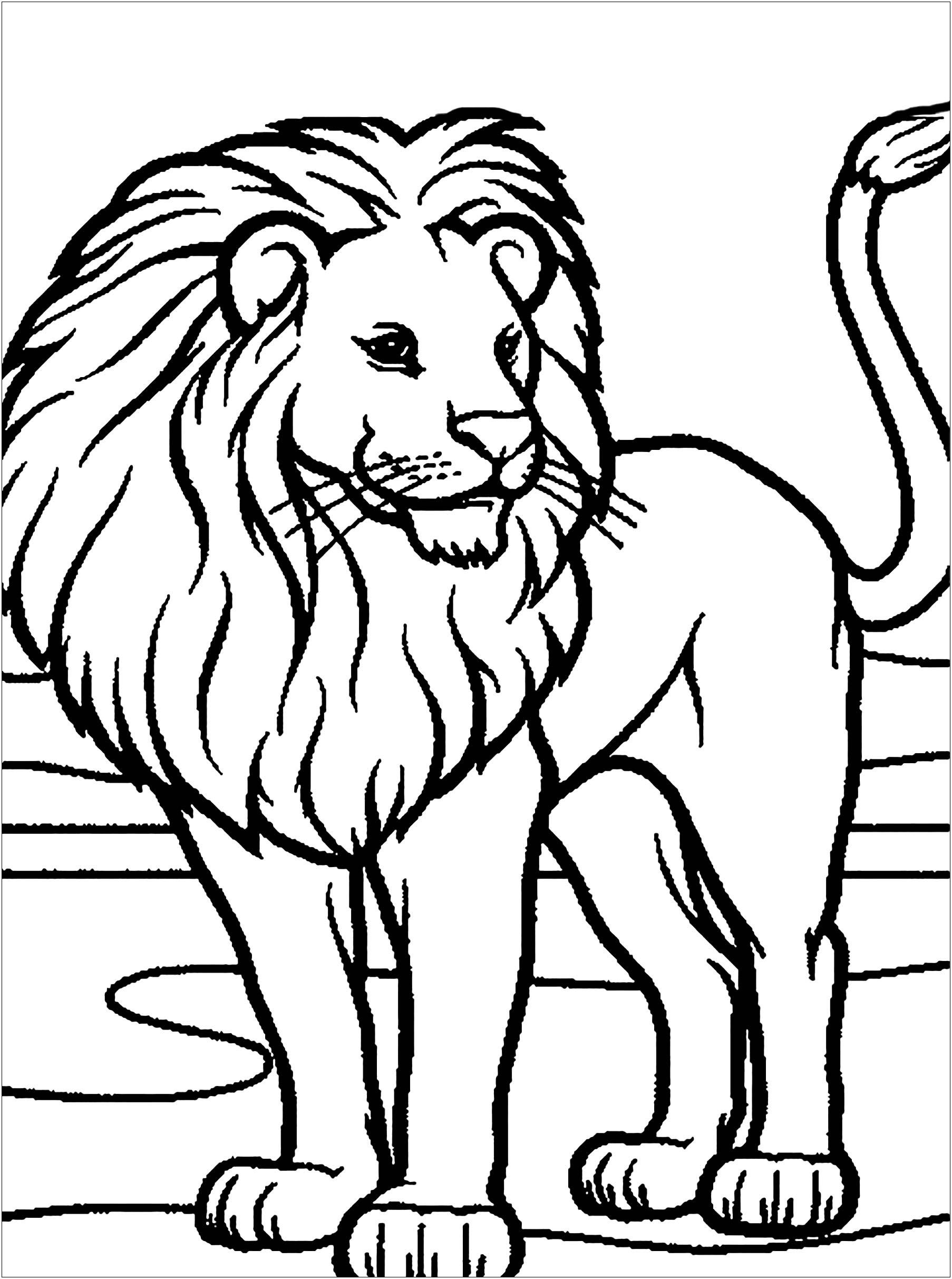 Coloring Page Of Lion Youngandtae Com In 2020 Animal Coloring Pages Lion Coloring Pages Coloring Pictures Of Animals
