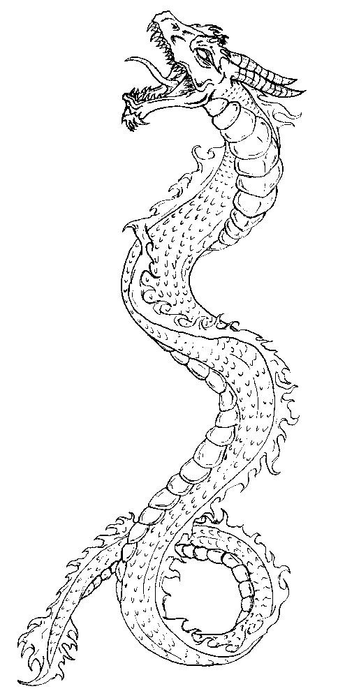 Dragon Tattoo Design 1 by happymonkeyshoes on DeviantArt