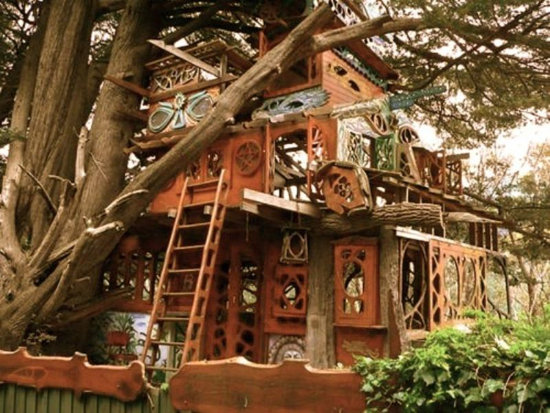 Best Treehouses Images On Pinterest Treehouses Home And - Contemporary banyon treehouse california
