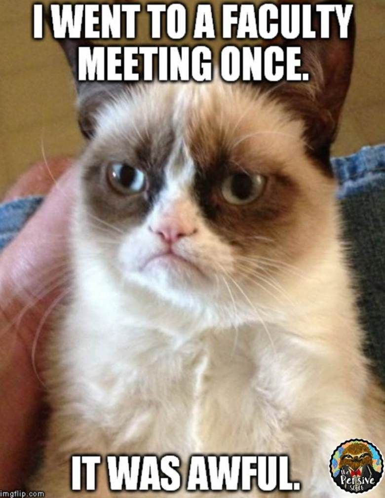 Memes For Teachers Grumpy Cat Quotes Funny Grumpy Cat Memes Grumpy Cat Humor