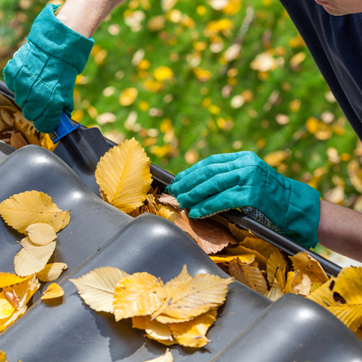 If you have gutters, it's a good time to check to see if