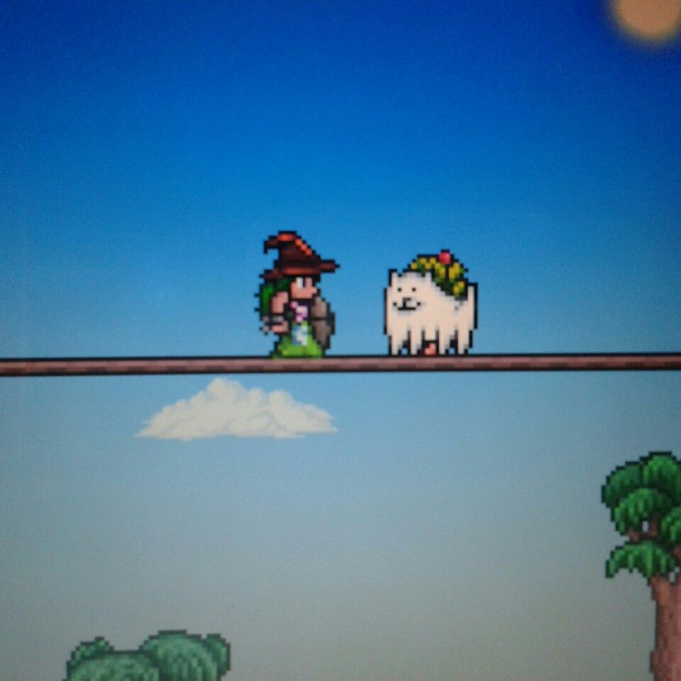 Look At My Pet Dog Look Familiar Is Not It Hehe Game Terraria