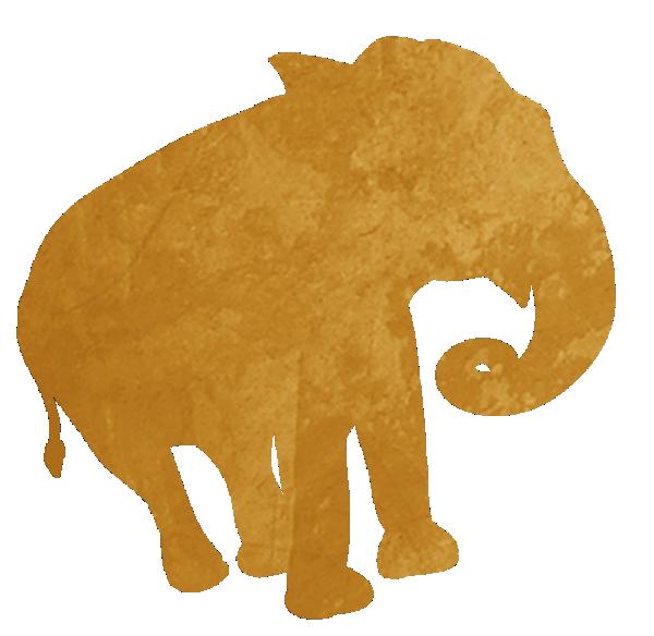 Safari Address Labels Wild One Animals Jungle Zoo Zazzle Com In 2021 Safari Animal Theme Zoo Party Jungle Safari Party