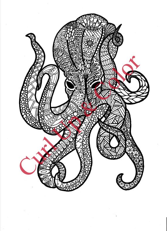 Adult Coloring Page Octopus Instant Download by DailyDoodler | Squid ...