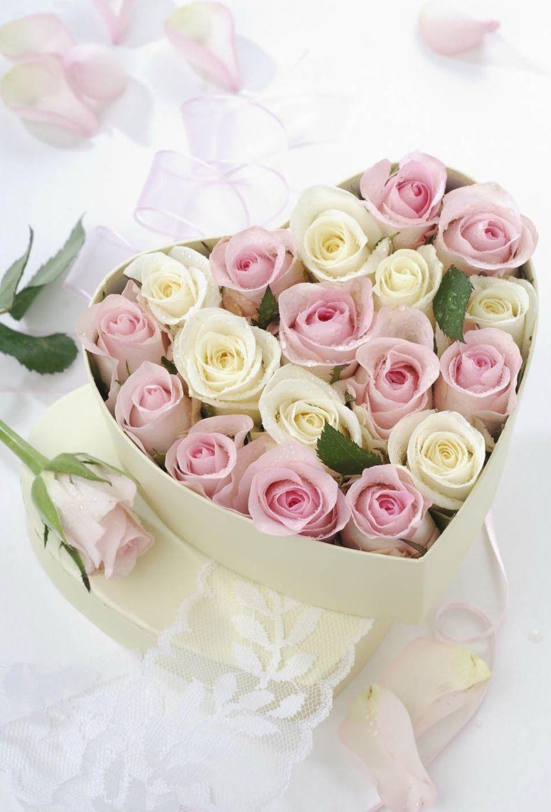 Ana Rosa Beautiful Words Pinterest Flowers Beautiful Flowers