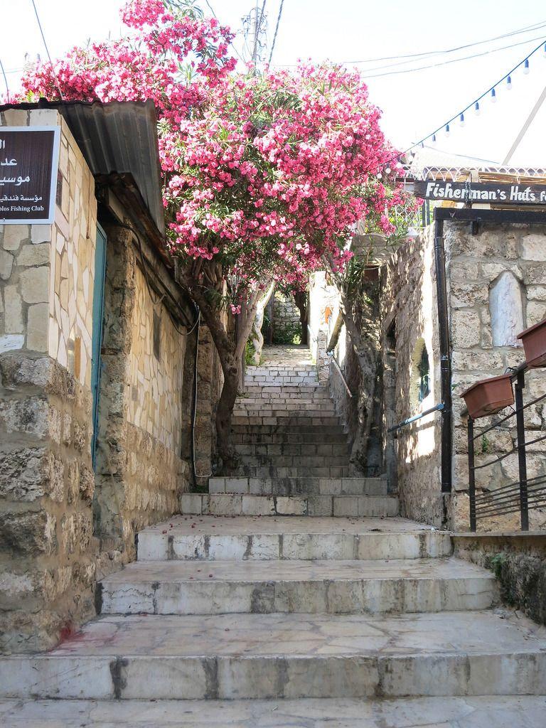 The Beauty Of Lebanon Byblos Lebanon Beautiful Places Lebanon
