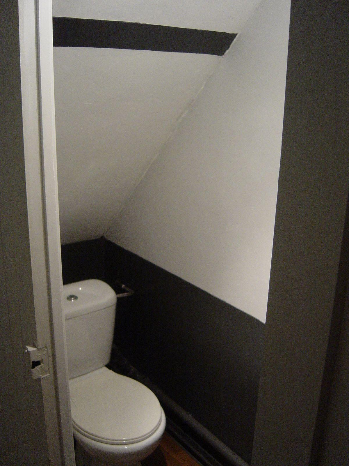Wc sous escalier escaliers pinterest sous escalier for Salle de bain sous escalier