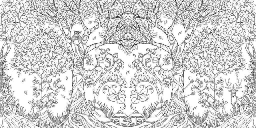 Johanna Basford Sells Million Copies Of Secret Garden Colouring In Book For Adults Livro Floresta Encantada