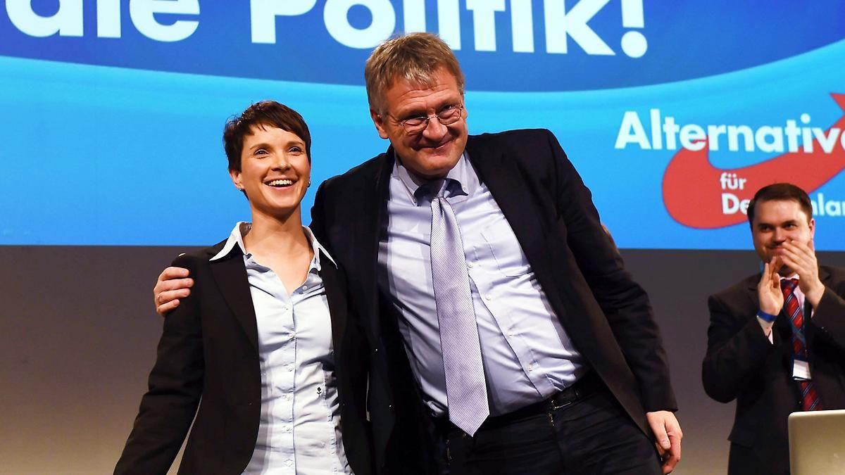"""Petry attackiert Meuthen scharf: AfD-Spitze streitet über """"Causa Gedeon"""""""