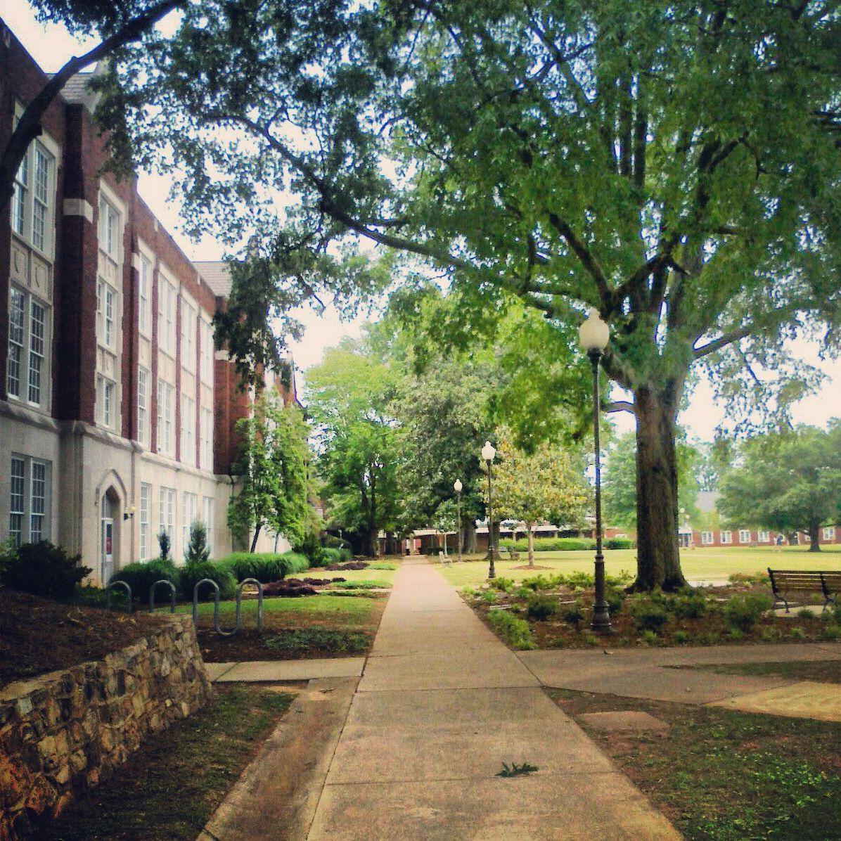 30 My Other Alma Mater Jsu Ideas Jacksonville State Alma Mater Jacksonville