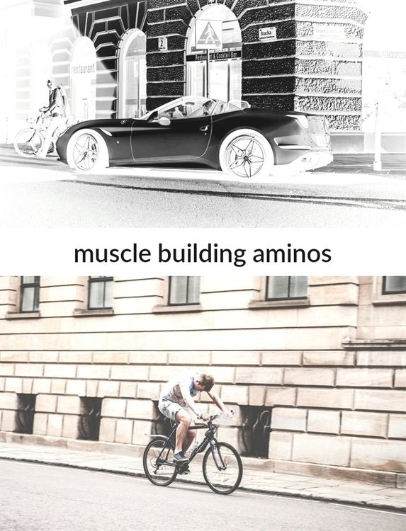 #muscle building aminos_43_20181102081428_51    best snacks for building lean #muscle, building muscle with hiit cardio elliptical, kris gethin 12 week muscle building day 46 memes chistosos de amor, muscle increase clothes fit tighter, kris gethin muscle building day 51 pics of flowers, muscle building on keto reddit women have curves quotes, muscle building workout plans videos de ozuna tengo, kris gethin 12 week muscle building day 18 candled egg day 5.