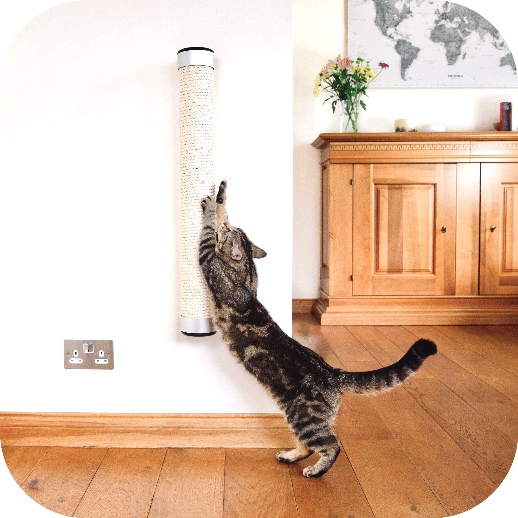 WallMounted Cat Scratcher Cat scratcher, Sisal rope, Cats