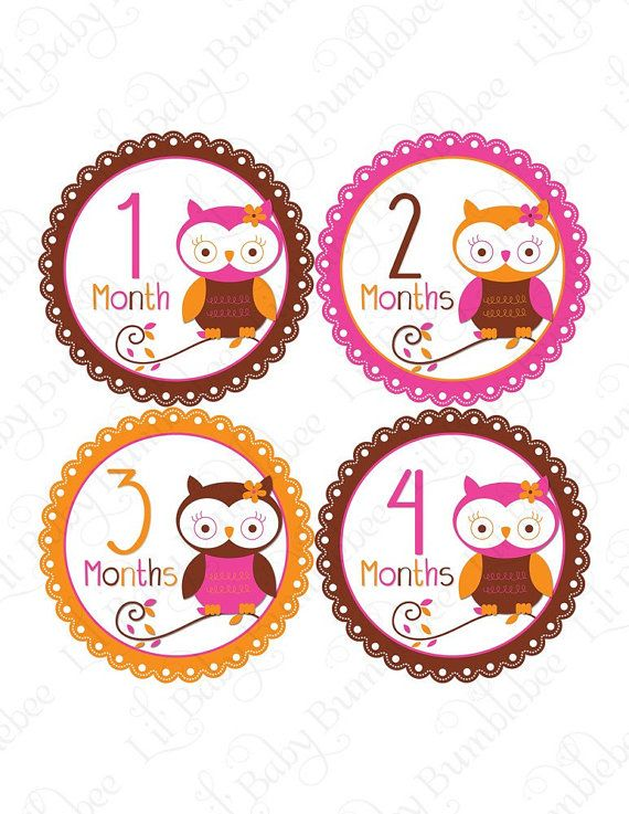 Monthly Onesie Stickers  Natalia  Cute by LittleBabyBumblebee, $9.00