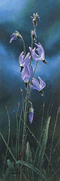 "/""Shooting Stars and Ladybug/"" Stephen Lyman Smallwork Giclee Canvas"