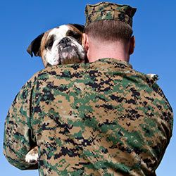 Pets Instead Of Pills Support Service Dogs For Veterans Sign In