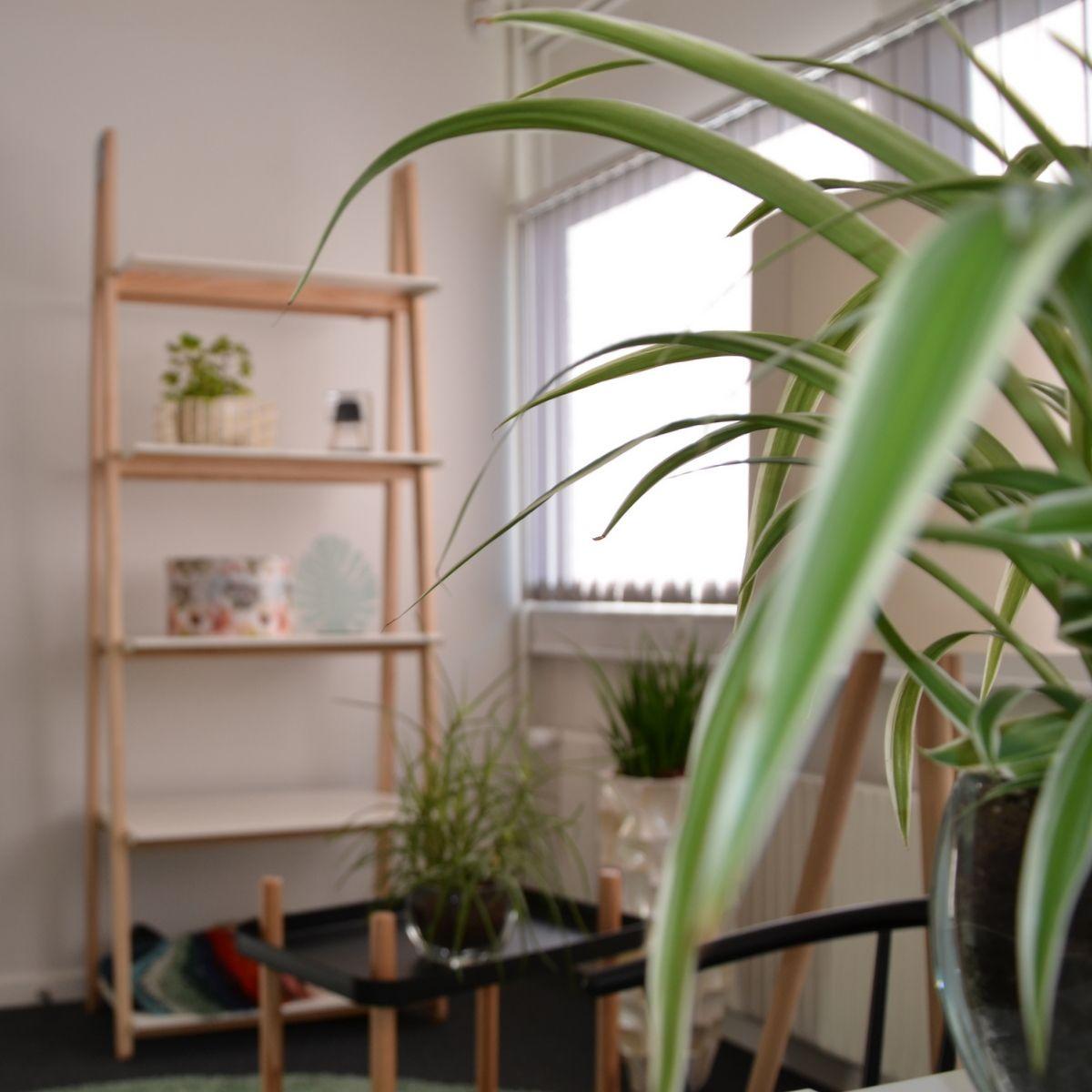 "1000+ images about ""rum for mennesker"" on Pinterest"