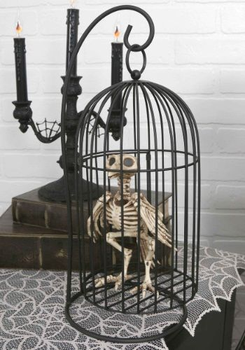 Cool Decorations Skeleton Bird In Cage Just Added