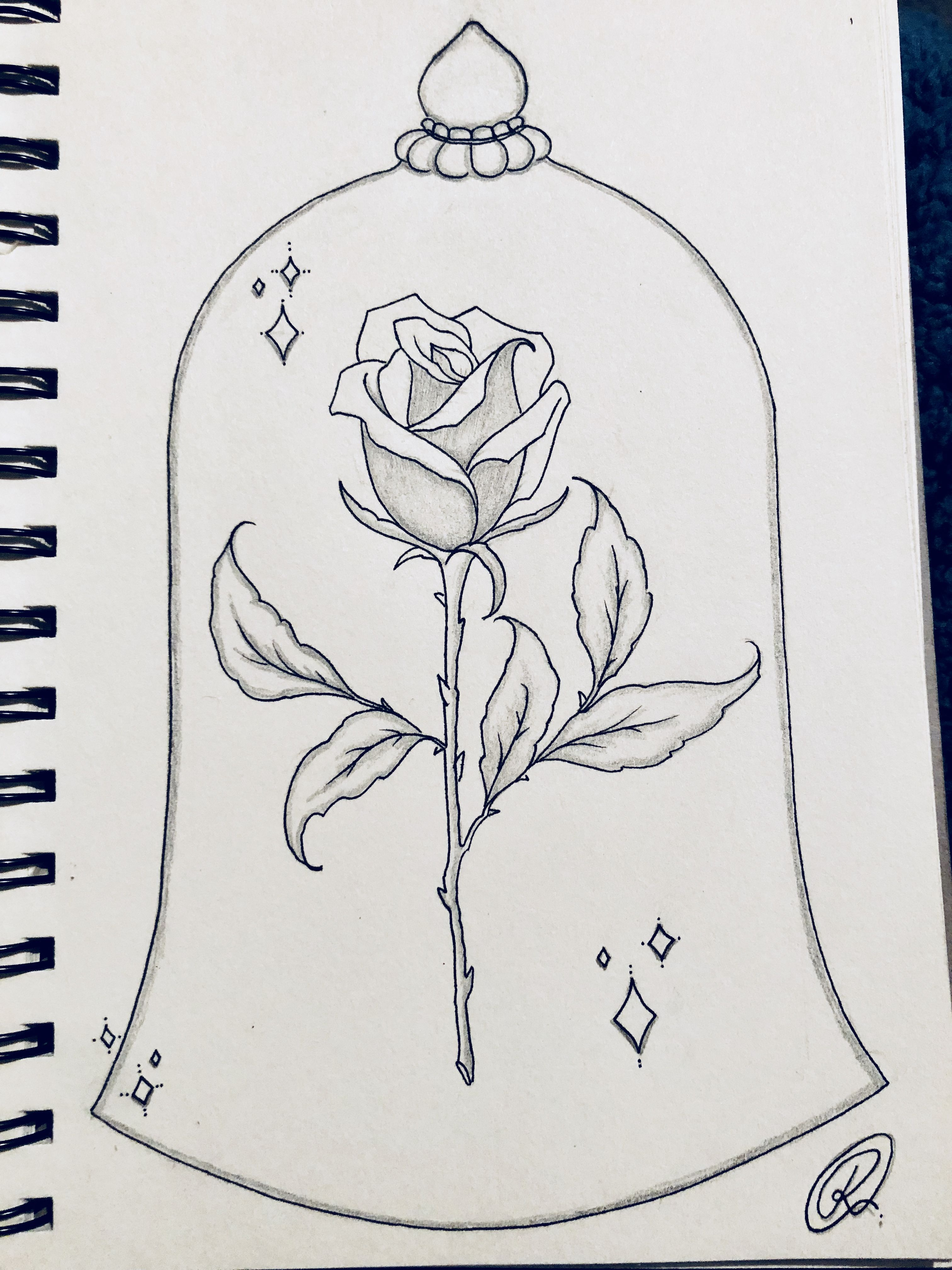 Rose Beautyandthebeast Drawing