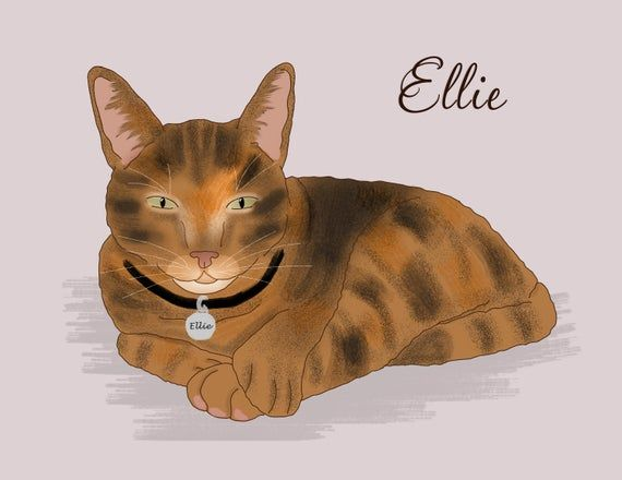Custom cat portrait Pet portrait mother's day gift cat portrait, Funny cat, birthday gift, pet memor