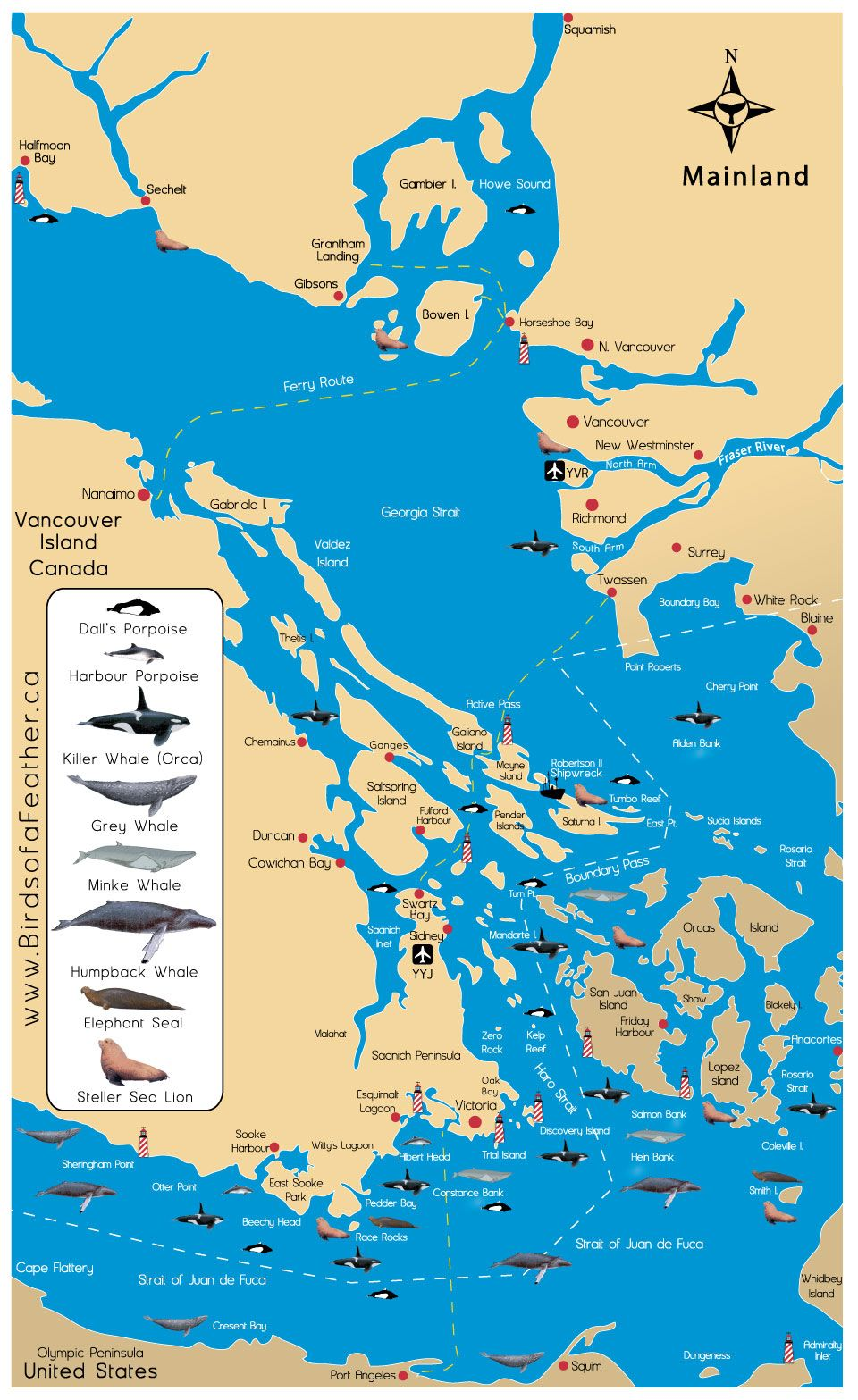 San Juan Islands Ferry Map San Juan Islands map w/ cetacean ranges. Ferry riders has the