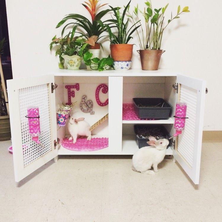 Wohnung ideen einrichtung - Kaninchenstall einrichten ...