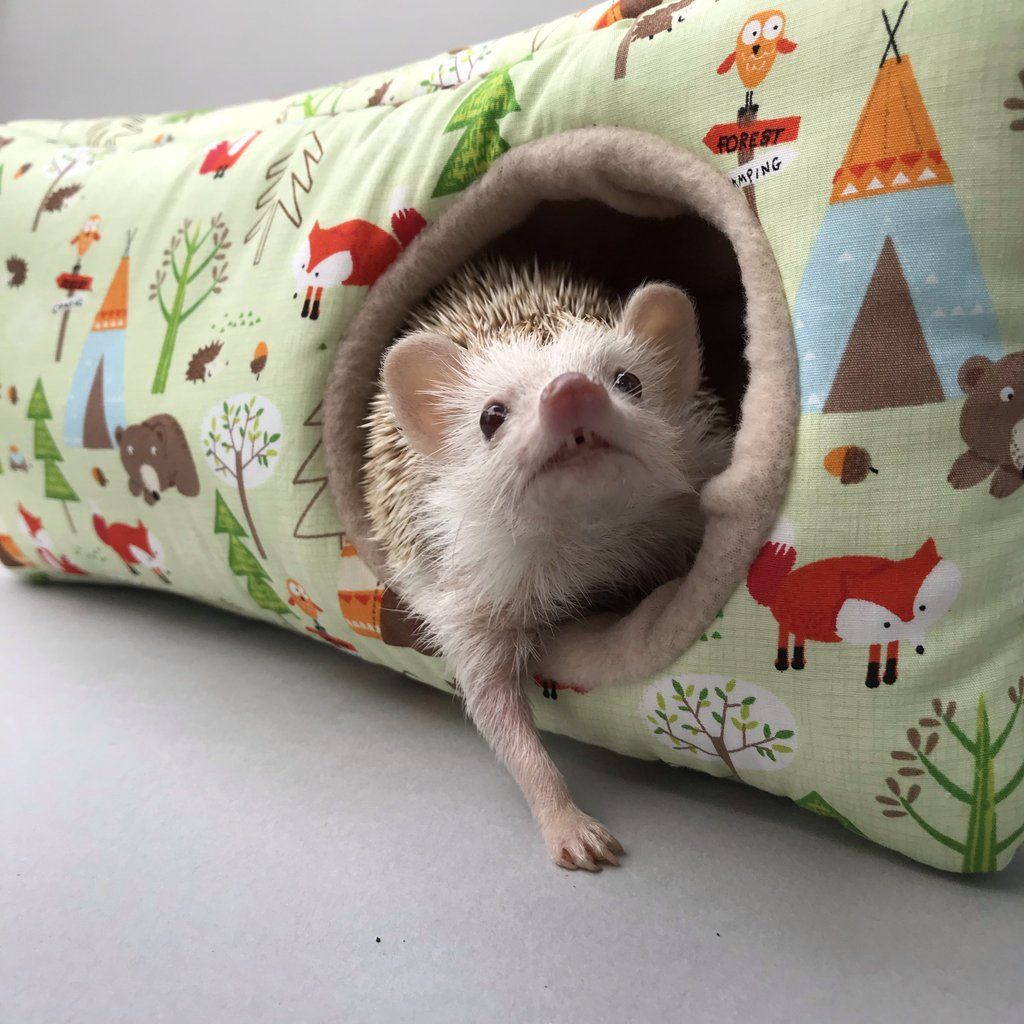 Camping Animals Corner House Padded Fleece Hedgehog House