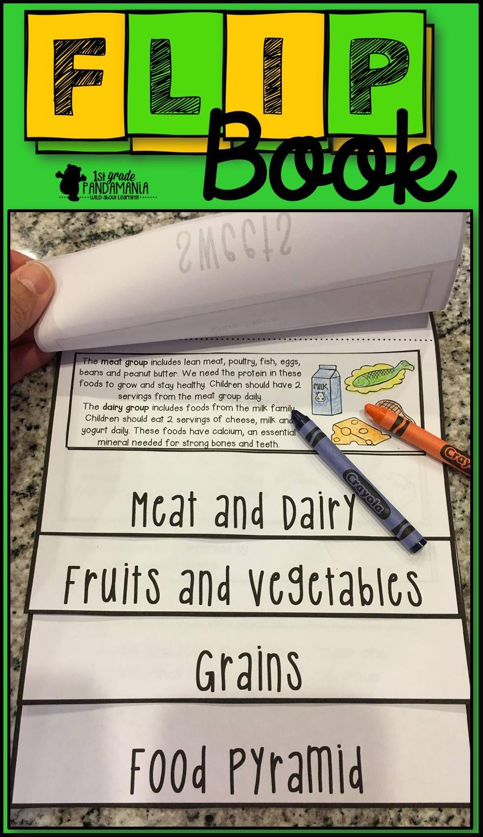 Food Pyramid Flip Book 2nd Grade