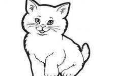 Katzen Ausmalbilder Katzen Malvorlage Katze Ausmalbilder