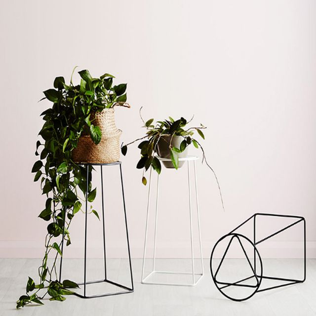 Soporte de la planta al aire libre barato jardín maceta de hierro - maceteros para jardin