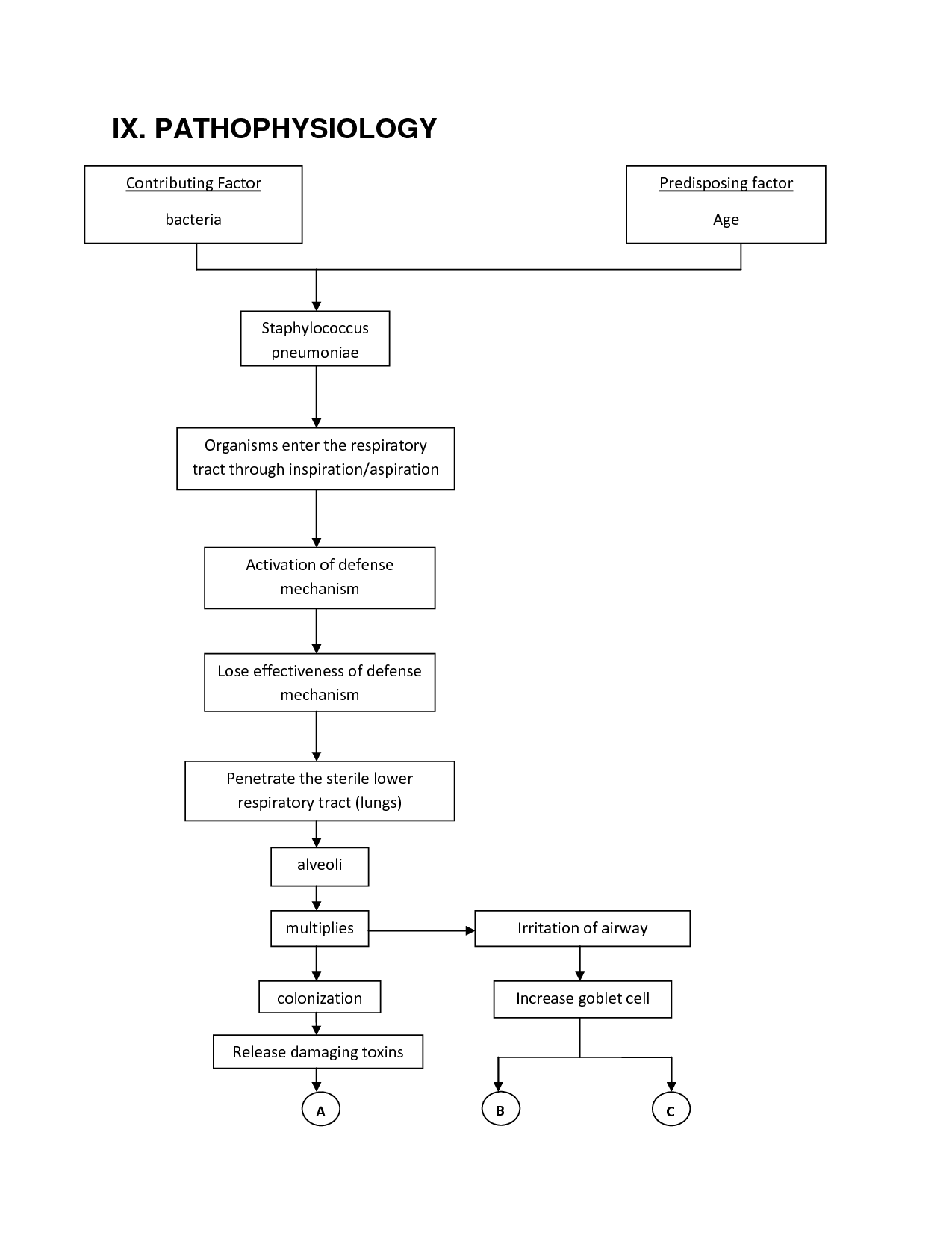 simple pneumonia diagram wiring diagrams wni pathophysiology charts pathophysiology of pneumonia nursing simple pneumonia diagram [ 1275 x 1650 Pixel ]