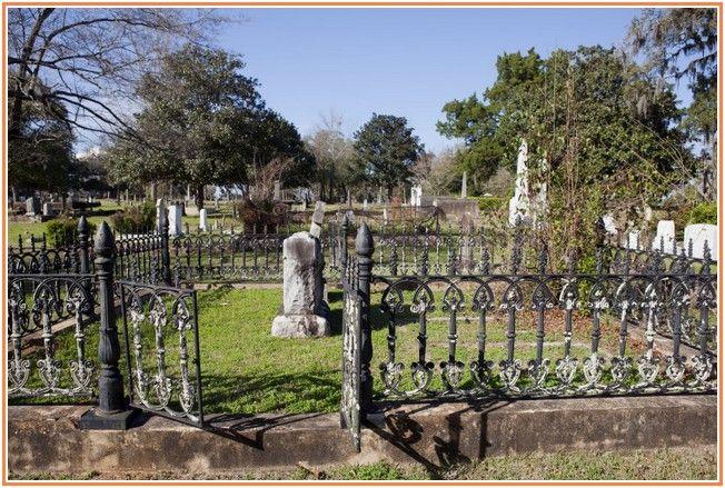 Fantastic Wrought Iron Fence Designs Fence Design Iron Fence