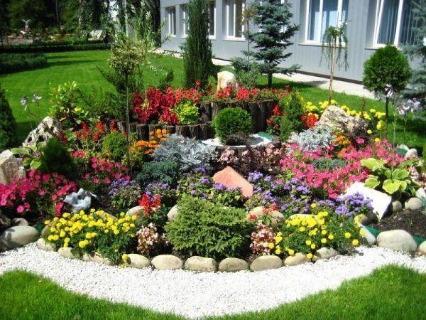 pflanzen für steingarten-ein harmonisches gesamtbild ästhetische - ideen gestaltung steingarten