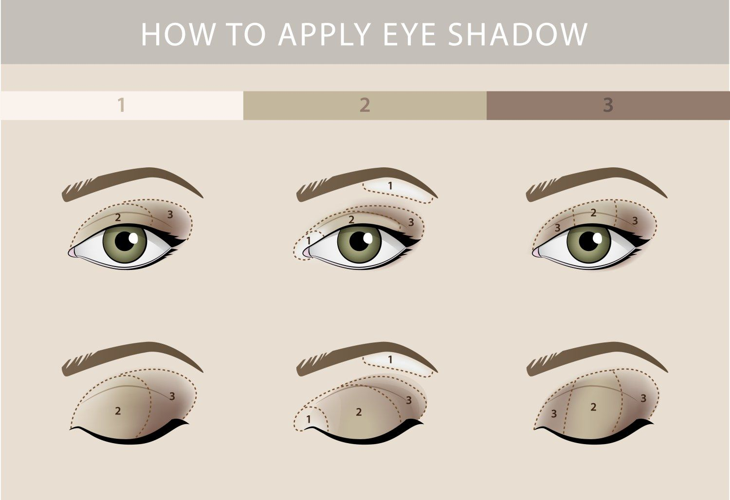 How To Apply Eyeshadow For Beginners: Super Simple Makeup Looks To
