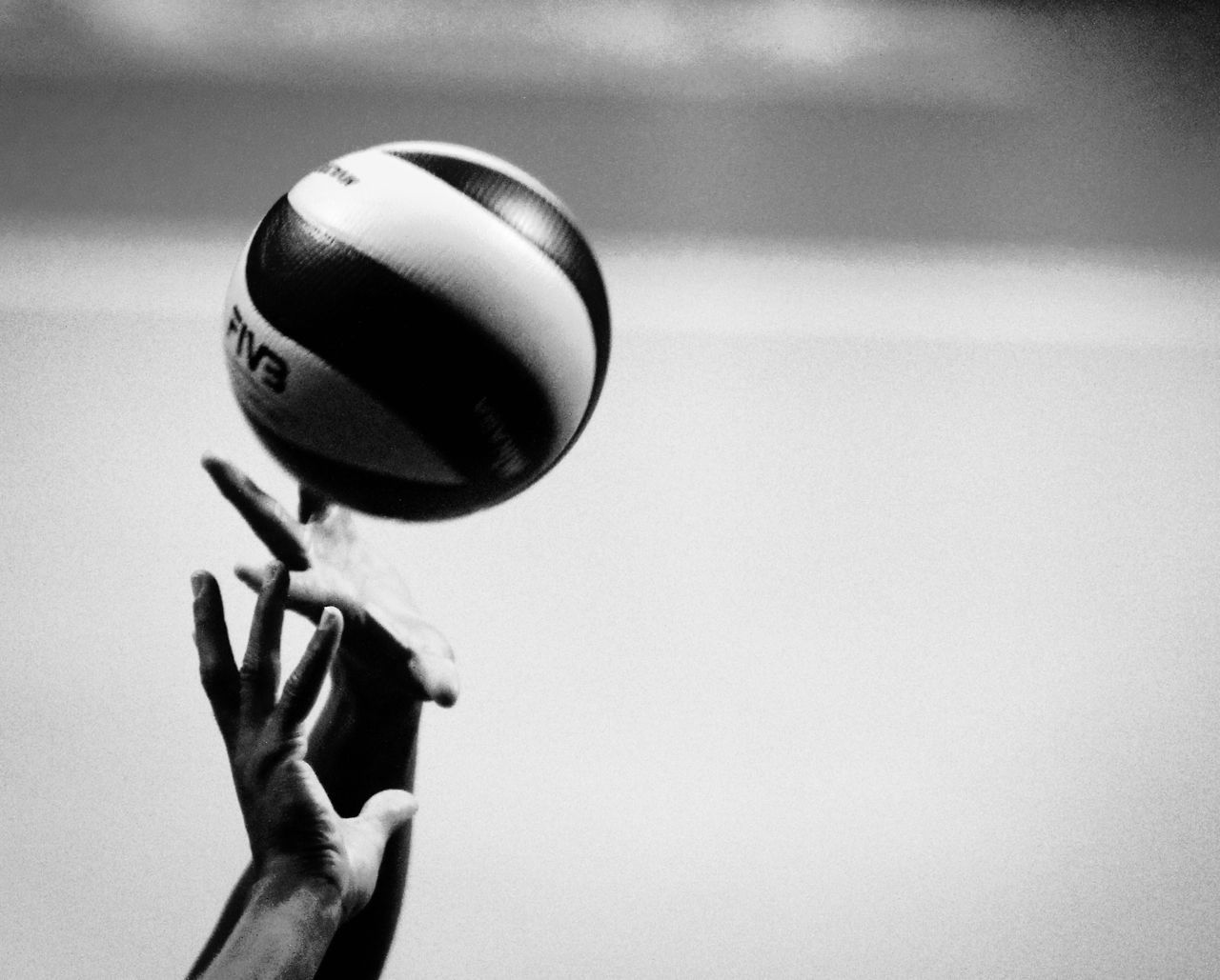 Volleyball Wallpaper Fondo De Pantalla De Voleibol Voley Voleibol