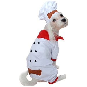 Chef Dog Costume My Dog Could Wear His Chef Coat And Ill Wear