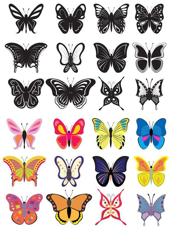 Set of colored and black butterflies Black butterfly