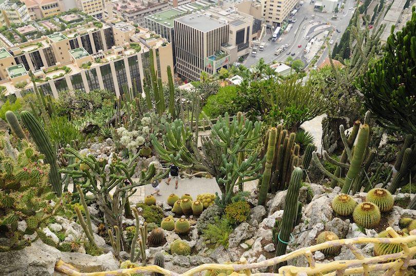 Jardin Exotique Monaco Garden Perfect Vacation Spots Tourist