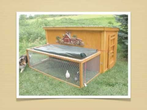Chicken Coop Ideas Design diy chicken coop 17 Best Images About How To Build A Chicken Coop On Pinterest Chicken Coop Designs Portable Chicken Coop And A Chicken
