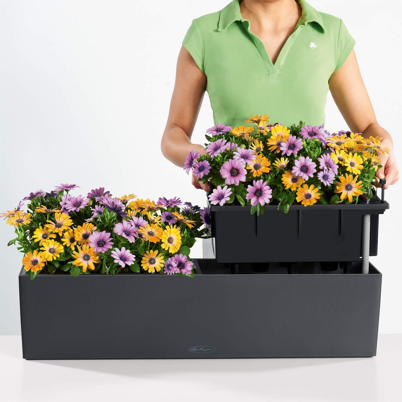 Lechuza Balconera Color 80 Komplettset Schiefergrau In 2020 Pflanzideen Pflanzen Balkonkasten