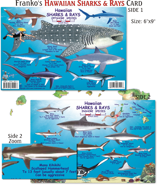 Cruise To Hawaii From California: Pin By Franko Maps & Guides On Hawaii Fish Cards