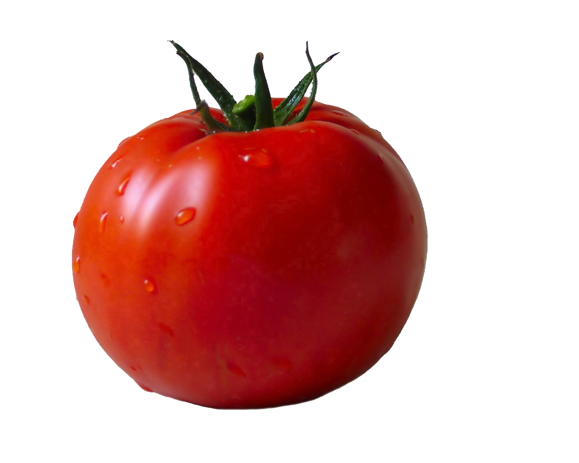 Tomato png, image, picture